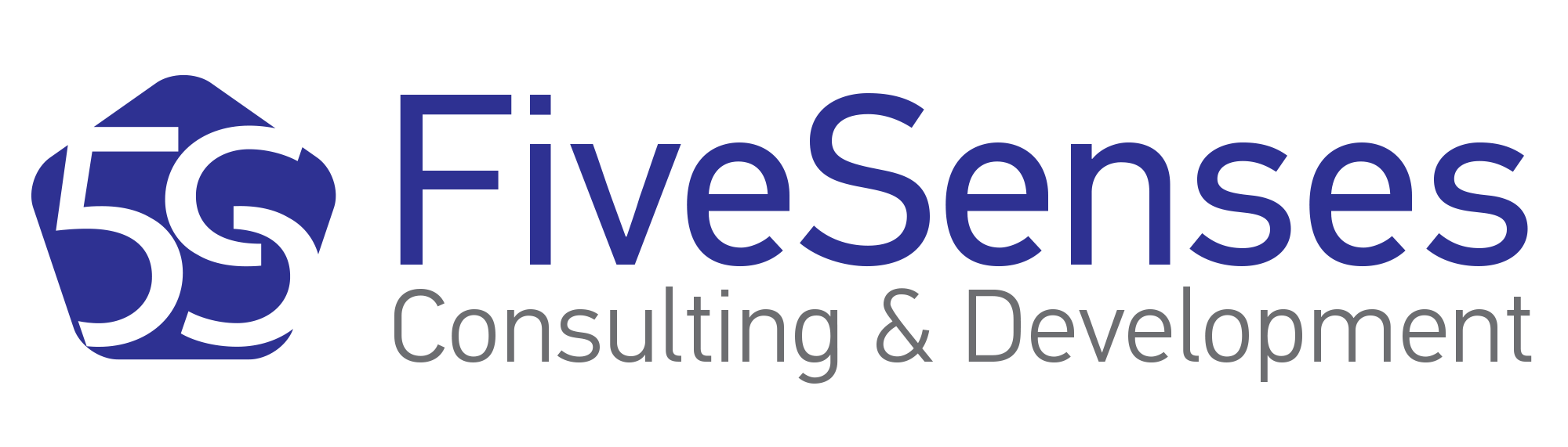 Five Senses Consulting