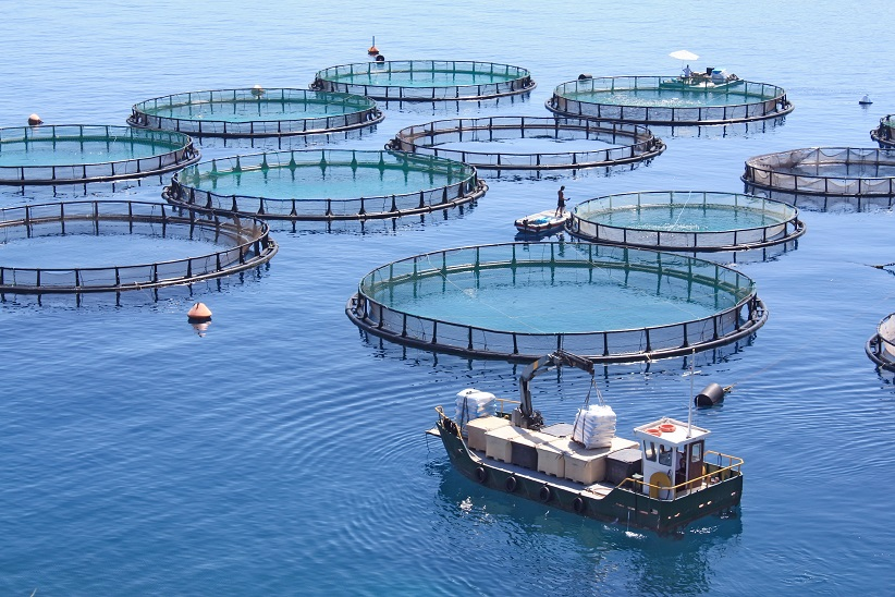 ATC Supervisor Aquaculture module and MBrick controller can monitor and manage fish cages